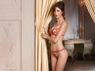 neue sorten Bestbewerteter Rabatt klassischer Stil von 2019 Cotton Club Dessous: Verführerischer Luxus aus Italien ...